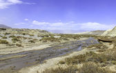 Dried river bed — Stock Photo