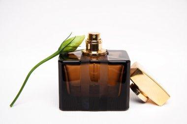 Brown perfume and bud