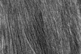 The texture of womens hair. — Stock Photo