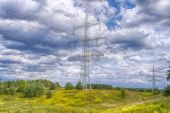 Electricity poles, landscape with blue sky and yellow flowers — Stock Photo