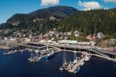 Small alaskan port city — Stockfoto