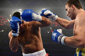 World series of boxing: Ukraine Otamans vs British Lionhearts — Stock Photo