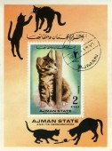 Stamp with cat — Stock Photo
