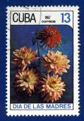 Stamp printed in Cub — Stock fotografie