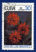Stamp printed in Cuba — Foto de Stock