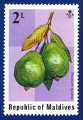 Stamp printed in Republic of Maldives — Stock Photo