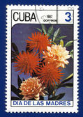 Stamp printed in Cuba — Foto Stock