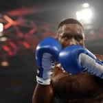 Постер, плакат: World series of boxing: Ukraine Otamans vs British Lionhearts