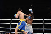 World series of boxing: Ukraine Otamans vs Cuba Domadores — Zdjęcie stockowe
