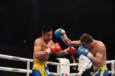 World series of boxing: Ukraine Otamans vs China Dragons — Zdjęcie stockowe