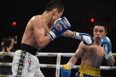 Der World Series of Boxing: Ukraine Otamans vs. russische Boxing Team — Stockfoto