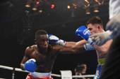 World series of boxing: Ukraine Otamans vs British Lionheart — Stock Photo