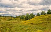 Utomhus landskap — Stockfoto
