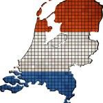 Netherlands map grunge mosaic — Stock Vector #51865769
