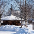 Winter trees in park — Stock Photo #53282481