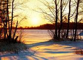 Winter nature, sunset — Stock Photo