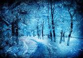 Kış doğa — Stok fotoğraf