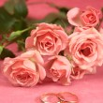 Wedding Golden rings — Stock Photo #64760515