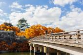 Japanese Castle with autumn leaves. — Stock Photo