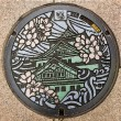 Manhole cover in Osaka, Japan — Stock Photo #57506739