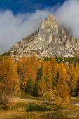 Yellow Larches and Dolomites-Passo Falzarego,Italy — Stock Photo