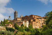 View of Old Buildings in Siena-Siena,Tuscany,Italy — Foto Stock