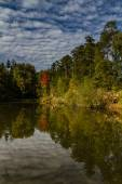 Water reflection of trees and sky - Czech Republic — Stock Photo
