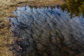 Water reflection of clouds-Trebon,Czech Republic — Stock Photo