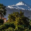 View of El Teide Volcano With Pine Forest-Spain — Stock Photo #63315323