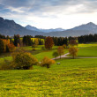 View of Flowering Meadow with High Mountain-Italy — Stock Photo #63316665