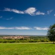 View of meadow and Valtice city from Reistna collonade — Stock Photo #64509539