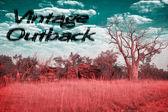 Vintage australia outback — Stockfoto