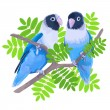 Pair of blue masked lovebirds. — Stock Vector #70730669
