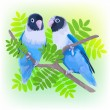 Pair of blue masked lovebirds. — Stock Vector #70730673
