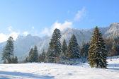 Mooie winterlandschap in Bergen — Stockfoto