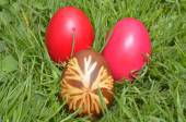 Easter Dekoration With Colorful Egs In Grass — Stock Photo