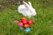 Easter eggs and the Easter bunny on grass — Stok fotoğraf
