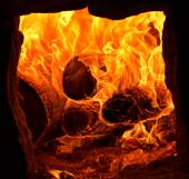 Burning fire in the stove — Foto de Stock