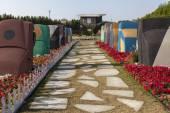 Flower Park in Dubai (Dubai Miracle Garden). United Arab Emirates — Stock Photo