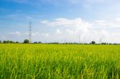 High voltage post.High-voltage tower with green field. — Stock Photo