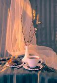 Bir fincan kahve, kayısı ve marshmallow dalı — Stok fotoğraf