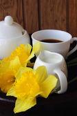 Cup of coffee, milk and daffodils — 图库照片