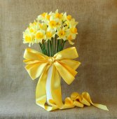 Bouquet of daffodils in a vase with silk bow — Stock Photo