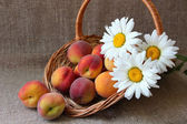 Basket with ripe peaches and bunch of daisies — Stockfoto