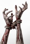 Hands bound,bloody hands, mud, rope, on a white background, isolated, kidnapping, zombie, demon — Stockfoto