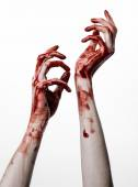 Bloody halloween theme: bloody hands killer zombie isolated on white background in studio — Stock Photo