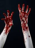 Bloody halloween theme: bloody hands killer zombie isolated on black background in studio — Stockfoto