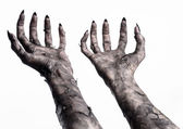 Black hand of death, the walking dead, zombie theme, halloween theme, zombie hands, white background, isolated, hand of death, mummy hands, the hands of the devil, black nails, hands monster — Stock Photo
