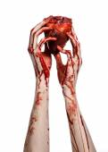 Blood and Halloween theme: terrible bloody hand hold torn bleeding human heart isolated on white background in studio — Stock Photo