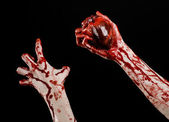 Blood and Halloween theme: terrible bloody hand hold torn bleeding human heart isolated on black background in studio — Fotografia Stock